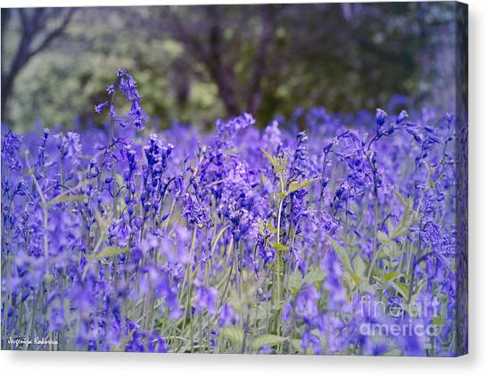 Natural Beauty Canvas Print by Jevgenija Kokoreva