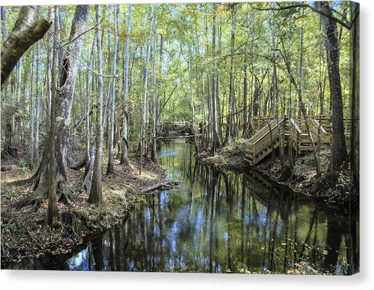Natural Bridge Springs Canvas Print by Frank Feliciano
