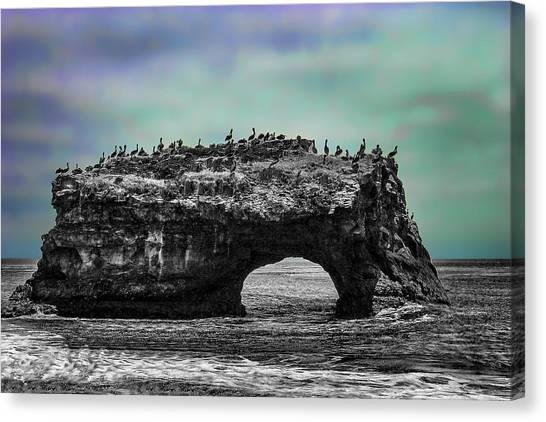 Natural Bridges State Beach Canvas Print