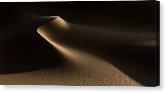Dunes Canvas Print - Natural Curves (namib Desert) by Xenia Ivanoff-erb