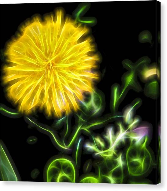 Natural Electric Beauty Canvas Print