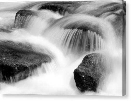 Natural Flow Canvas Print