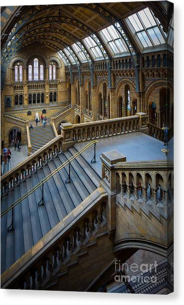 Natural History Museum Canvas Print - Natural History Museum by Inge Johnsson