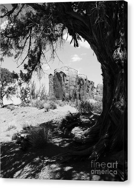 Natural Wood Frame Bw Canvas Print by Mel Steinhauer