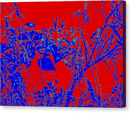 Nature Arti  Image Canvas Print