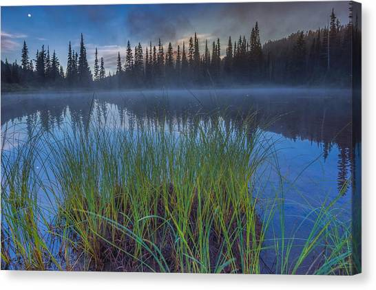 Nature Awakes Canvas Print