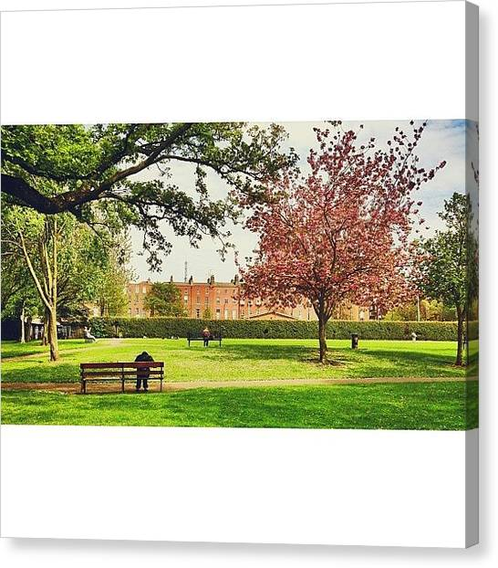 Medieval Art Canvas Print - Nature In Bloom From My Window.  Former by Luis Aviles