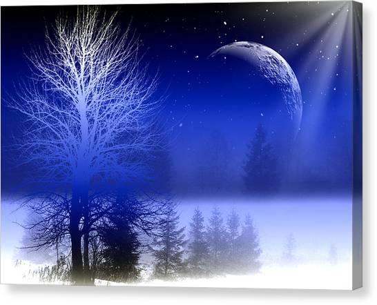 Unique View Canvas Print - Nature In Blue  by Mark Ashkenazi