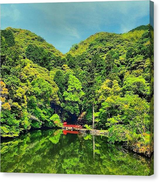Autumn Leaves Canvas Print - #nature #japan #forest #autumn #fall by Fuukan Kanazawa