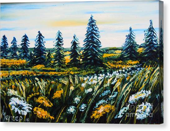 Nature Landscape Field Flowers Pines Art  Canvas Print by Drinka Mercep