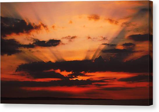 Nature Light Show Canvas Print by Tony Reddington