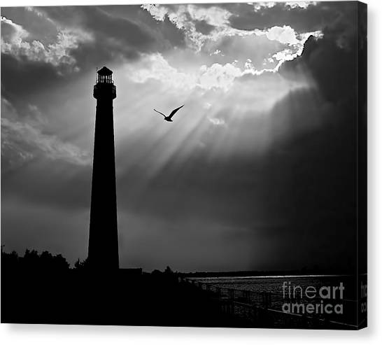 Nature Shines Brighter In Black And White Canvas Print