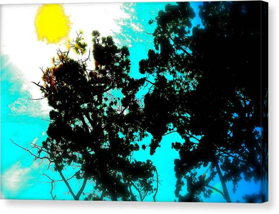 Nature Too Canvas Print