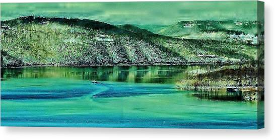 Nature's Artwork Canvas Print by Gordon W Miller