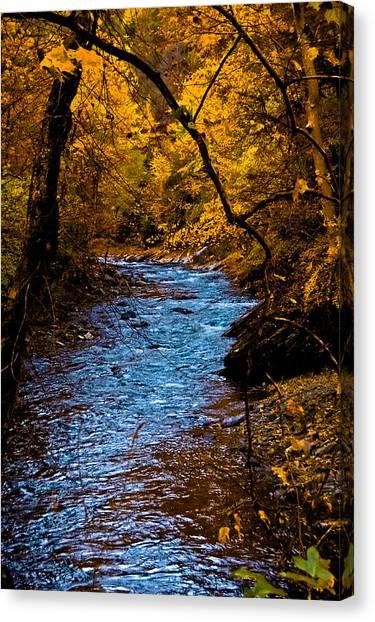 Natures Golden Secret Canvas Print
