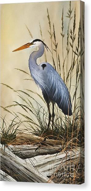 Natures Grace Canvas Print