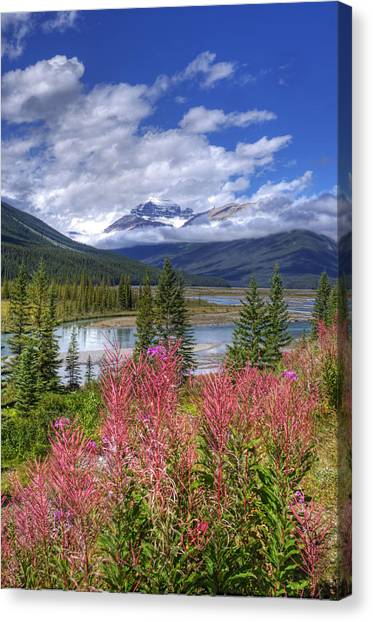 Natures Majesty Canvas Print
