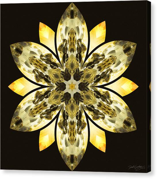 Nature's Mandala 57 Canvas Print