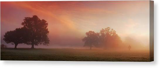 Natures Spectacle Canvas Print