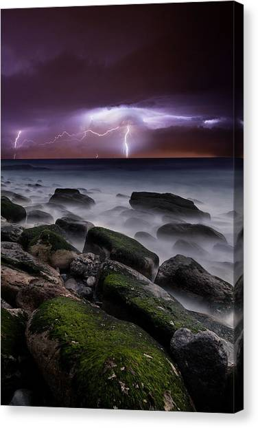 Nature's Splendor Canvas Print