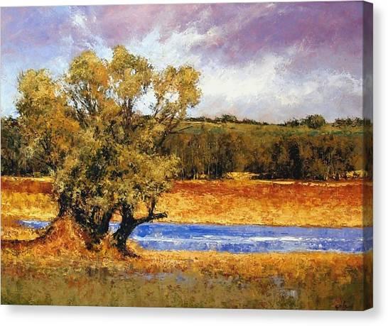Canvas Print - Nature's Trail - Ridgefield by Jim Gola