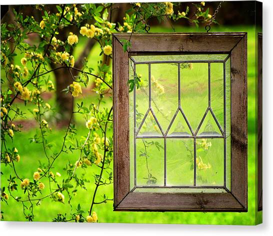 Nature's Window Canvas Print