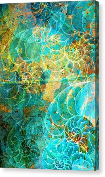 Nautilus Seashells In Aqua Canvas Print