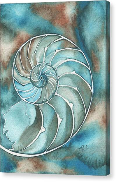 Organic Canvas Print - Nautilus by Tamara Phillips
