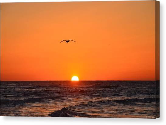 Navarre Beach Sunrise Waves And Bird Canvas Print