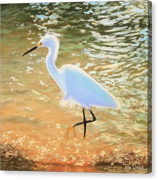 Navigating The Tide Canvas Print by Tim Davis