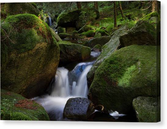 Canvas Print featuring the photograph near the Brocken, Harz by Andreas Levi