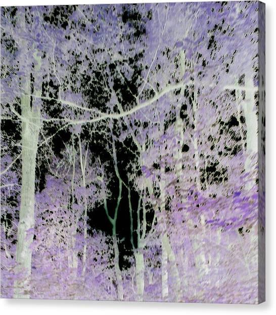 Negascape Canvas Print
