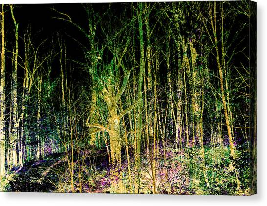Negative Forest Canvas Print
