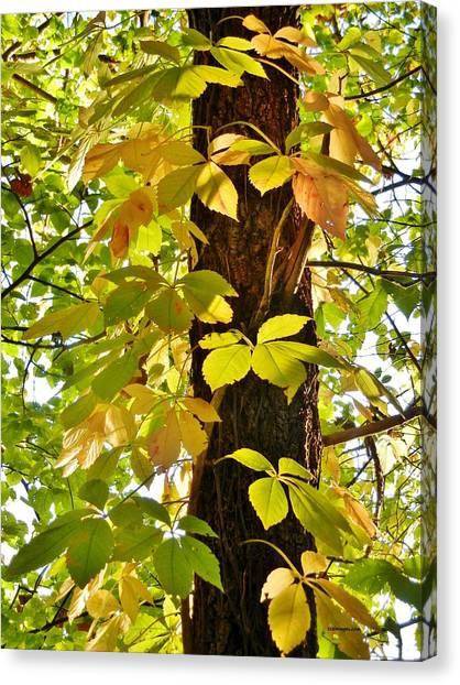 Neon Leaves Canvas Print