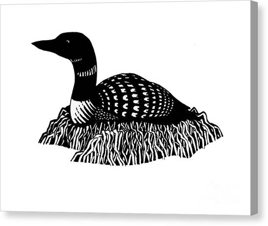 Nesting Loon Canvas Print