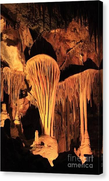 Limestone Caves Canvas Print - Nevada Parahute Shield by Adam Jewell