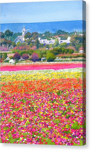 Pacific Coast Canvas Print - New Carlsbad Flower Fields by Mary Helmreich