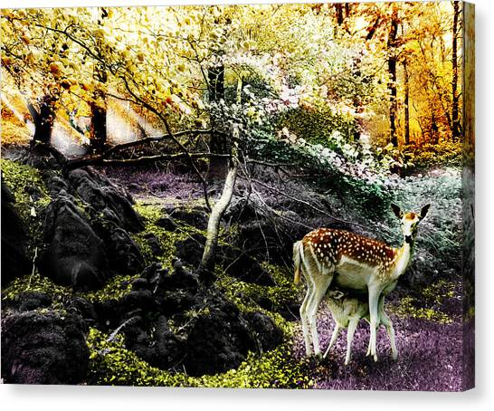 New Life In Fantasia Canvas Print