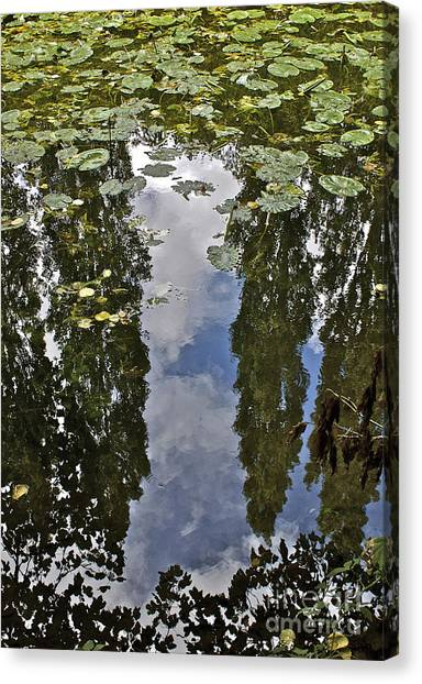 Reflections Amongst The Lily Pads Canvas Print