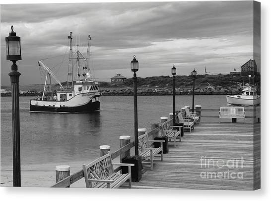 Canvas Print - New Species Heading Home by Christiane Schulze Art And Photography
