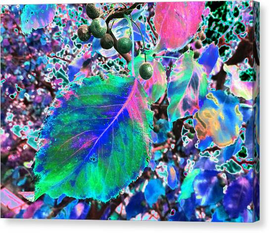 New Years Eve V9 Canvas Print