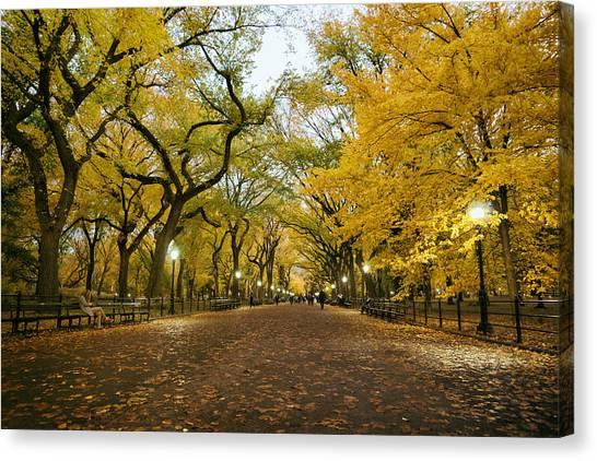 Literary Canvas Print - New York City - Autumn - Central Park - Literary Walk by Vivienne Gucwa