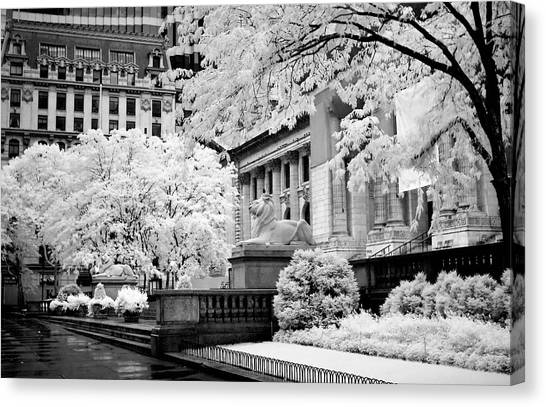 New York Public Library Ir Canvas Print
