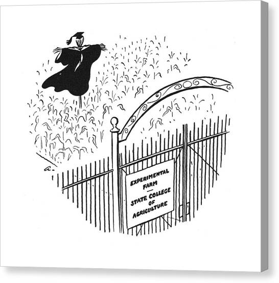Scarecrows Canvas Print - New Yorker June 28th, 1941 by  Alain