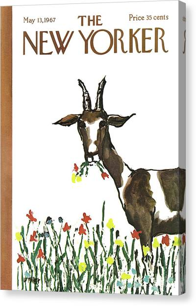 Goats Canvas Print - New Yorker May 13th, 1967 by Warren Miller