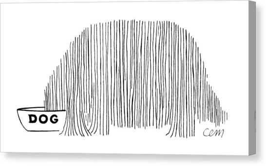 Long Hair Canvas Print - New Yorker May 20th, 1961 by Charles E Martin