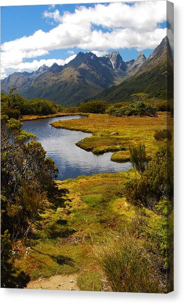 New Zealand Alpine Landscape Canvas Print