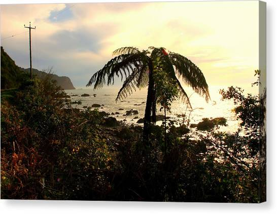 Fox Glacier Canvas Print - New Zealand's West Coast by Amanda Stadther
