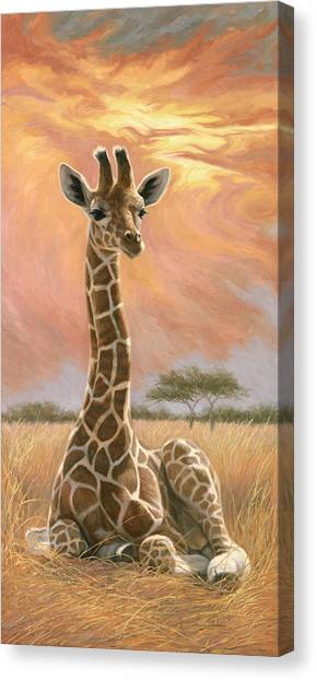 Newborn Giraffe Canvas Print