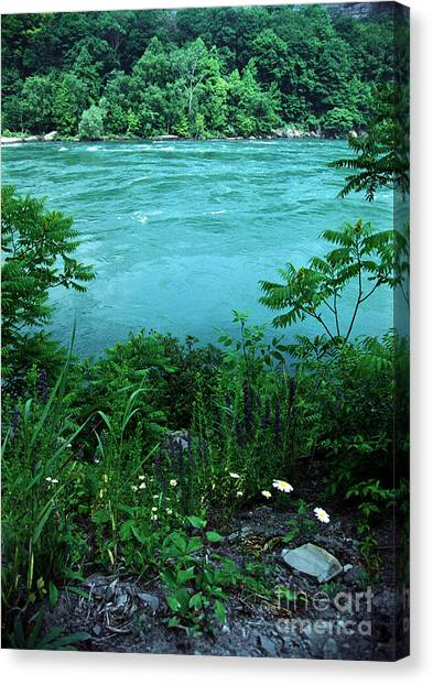 Niagara River Gorge  Canvas Print